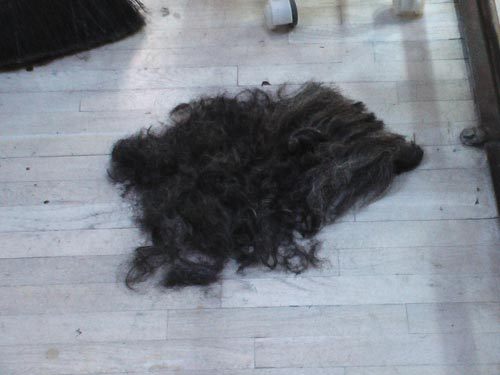 Marios hair donation for the oil spill